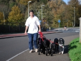 Dave with six dogs
